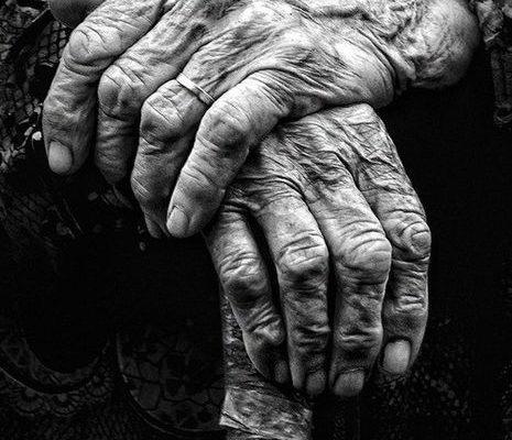 frase abuelos